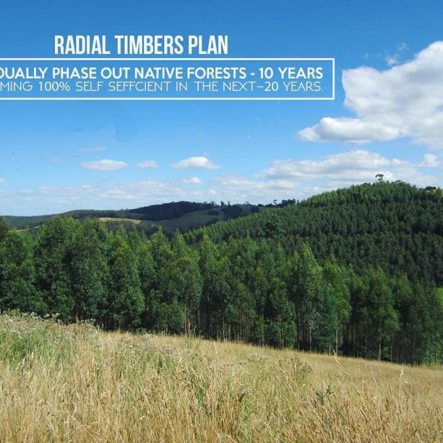 Radial Timber plans for the future Its a long investmenthellip